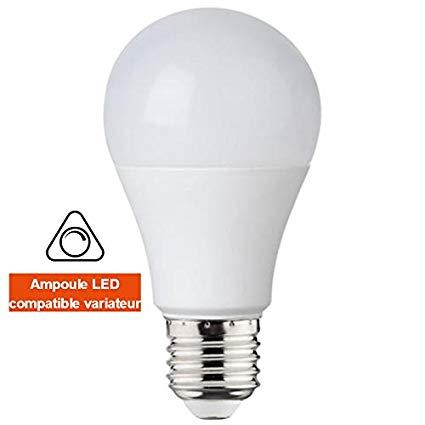 Bec LED HOROZ EXPERT-10 10W (analog 75W) A60 6400K E27 DIMABIL