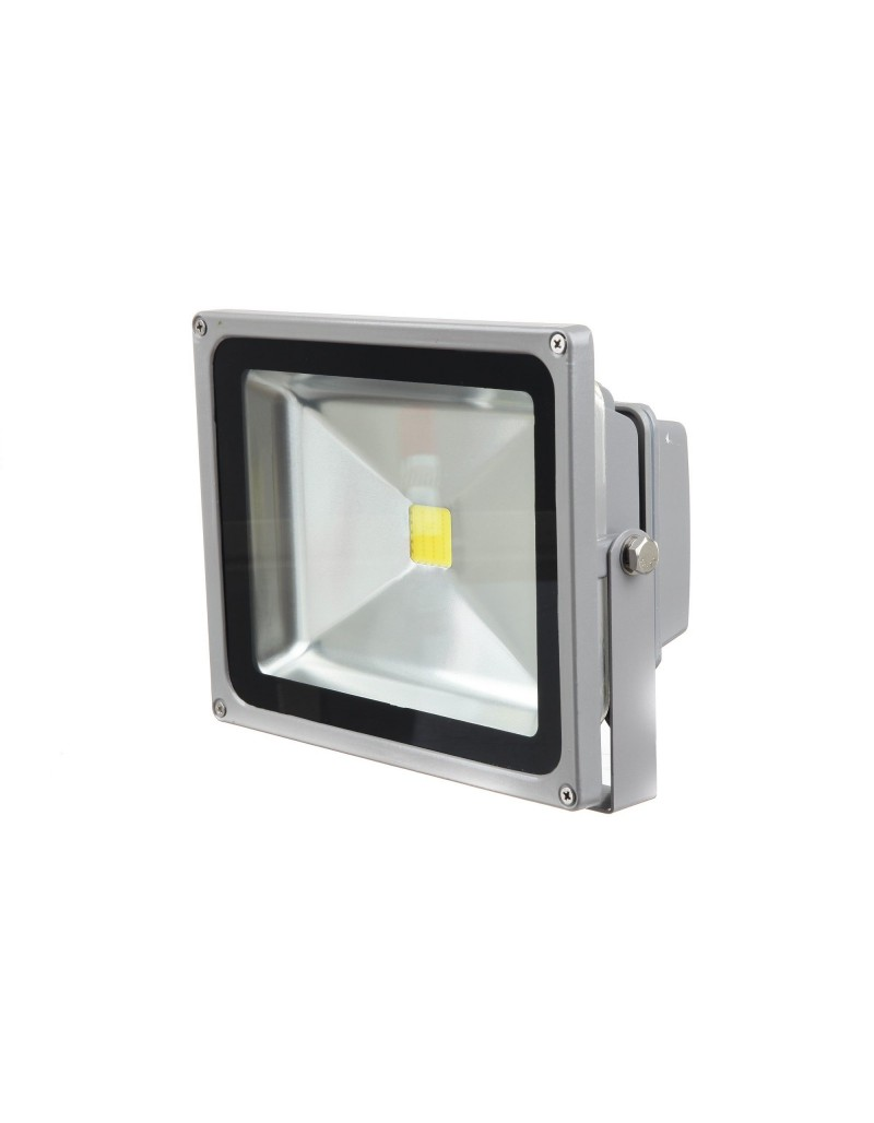 Proiector LED TED Electric 50W 230V lumina rece 6400K TED-50PR65